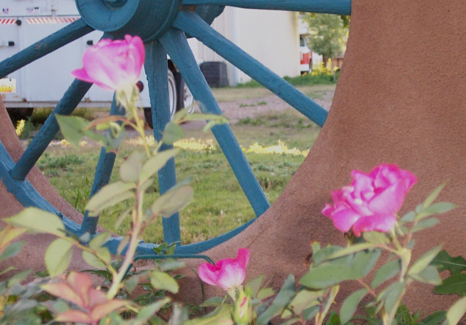 Horse Ranch Main House: The inset wagon wheel in the adobe wall, painted a compatible blue is beautiful with the roses.