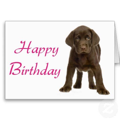 Happy Birthday Chocolate Lab Happy Birthday Labrador Happy Birthday Puppy Happy Birthday Dog