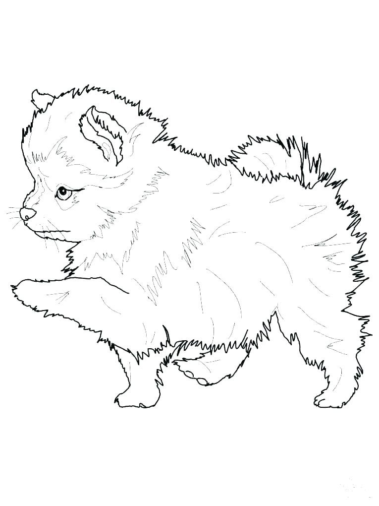 Puppy Colouring Pictures Puppy Coloring Pages Dog Line Drawing Cute Animal Clipart