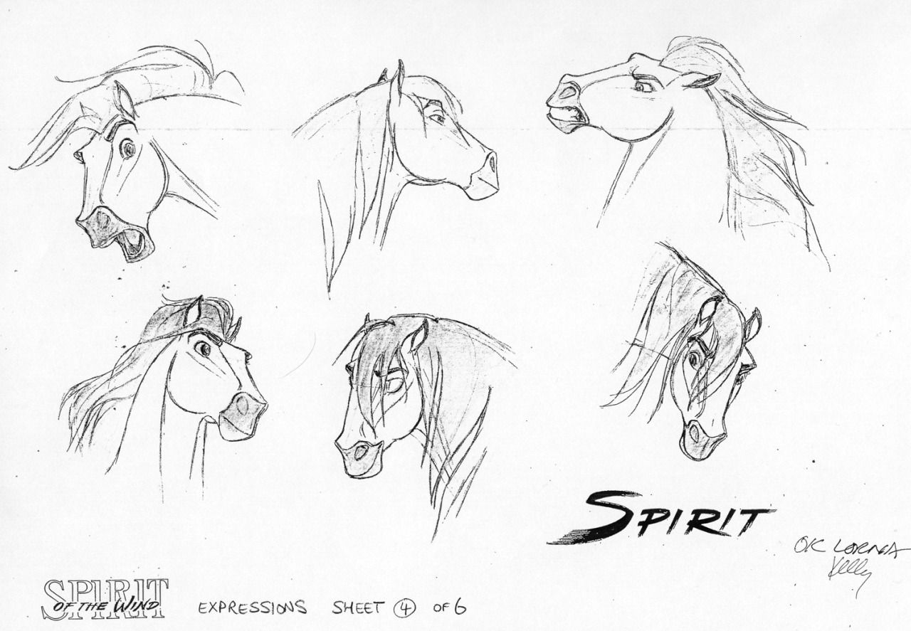 Characters of dreamworks d dreamworks animation photo pictures to pin - Find This Pin And More On Horse Drawings Spirit By James Baxter Dreamworks Animation Studios Animal Character Concepts