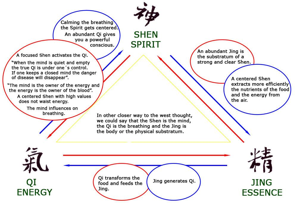 Shen Jing - Google Search | Traditional Chinese Medicine | Pinterest ...