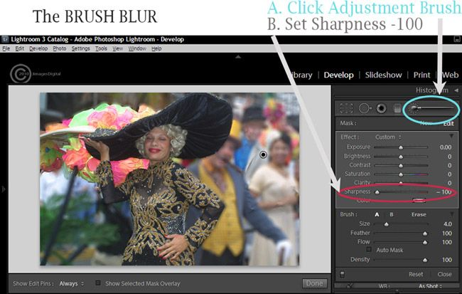 The Goal Here Is To Blur The Background In Lightroom And To Go Beyond The Lightroom Photoshop Lightroom Photo Magazine