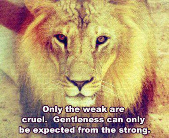 The Strong