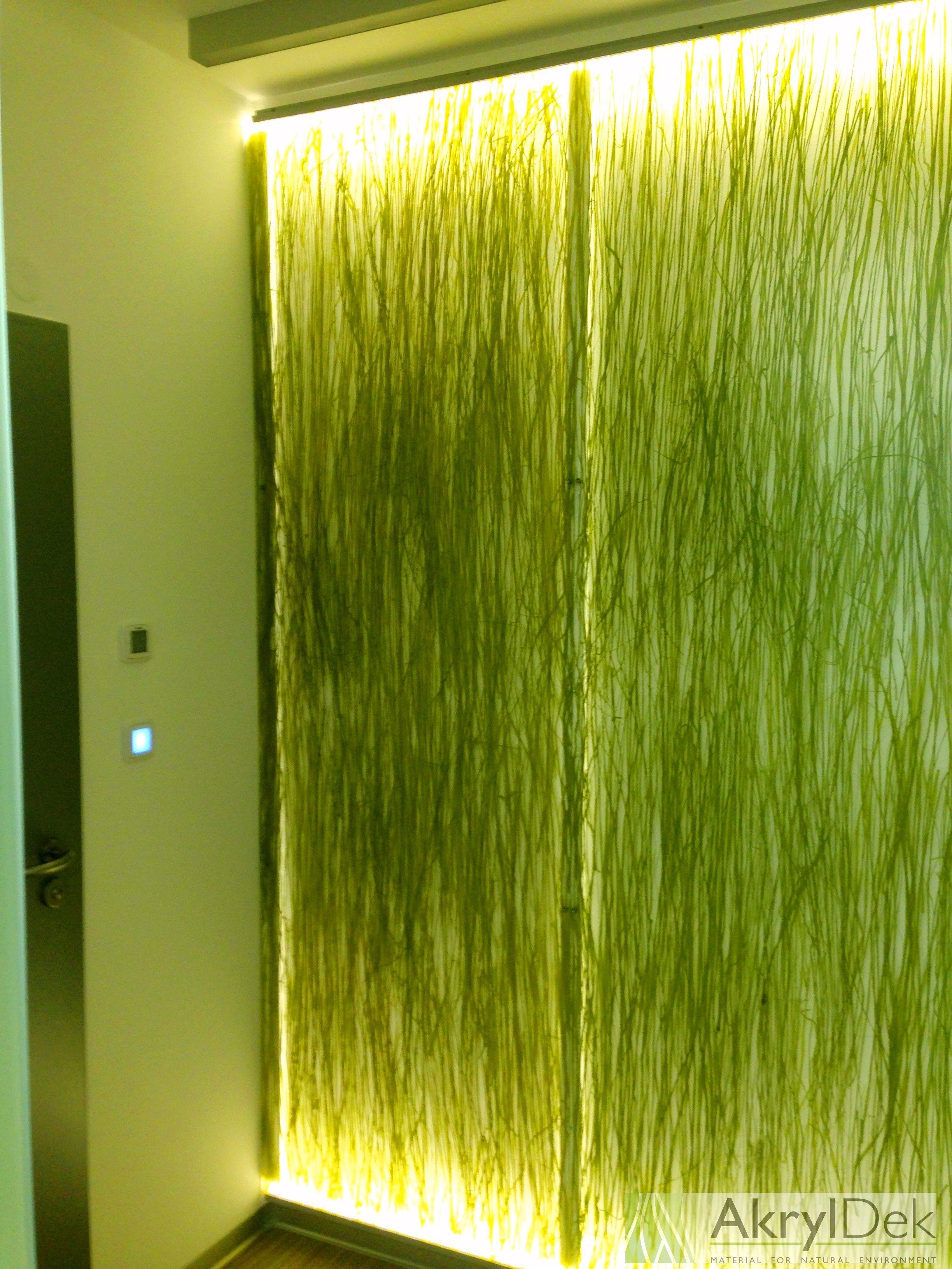 Wall Panel Decoration With Organic Grass And Backlight Decorative Translucent Wallpanels Decoration Resin Acrylic Design Idea Decor Home Decor