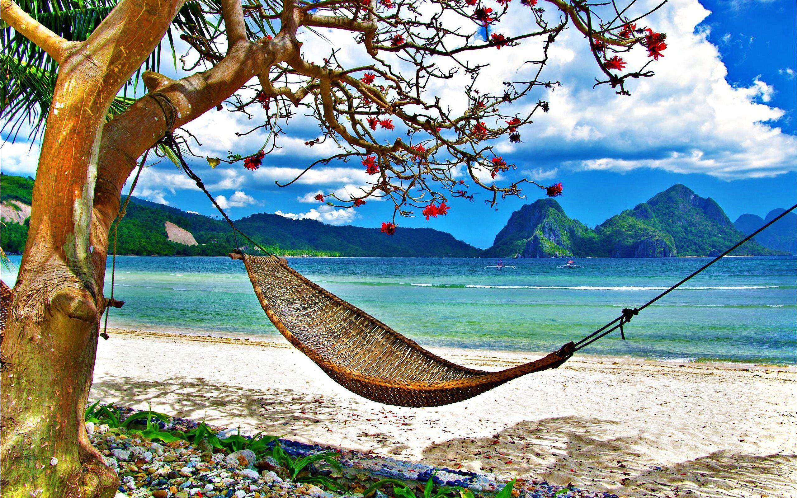hammock photography   hammock beach wallpapers pictures photos images hammock photography   hammock beach wallpapers pictures photos      rh   pinterest