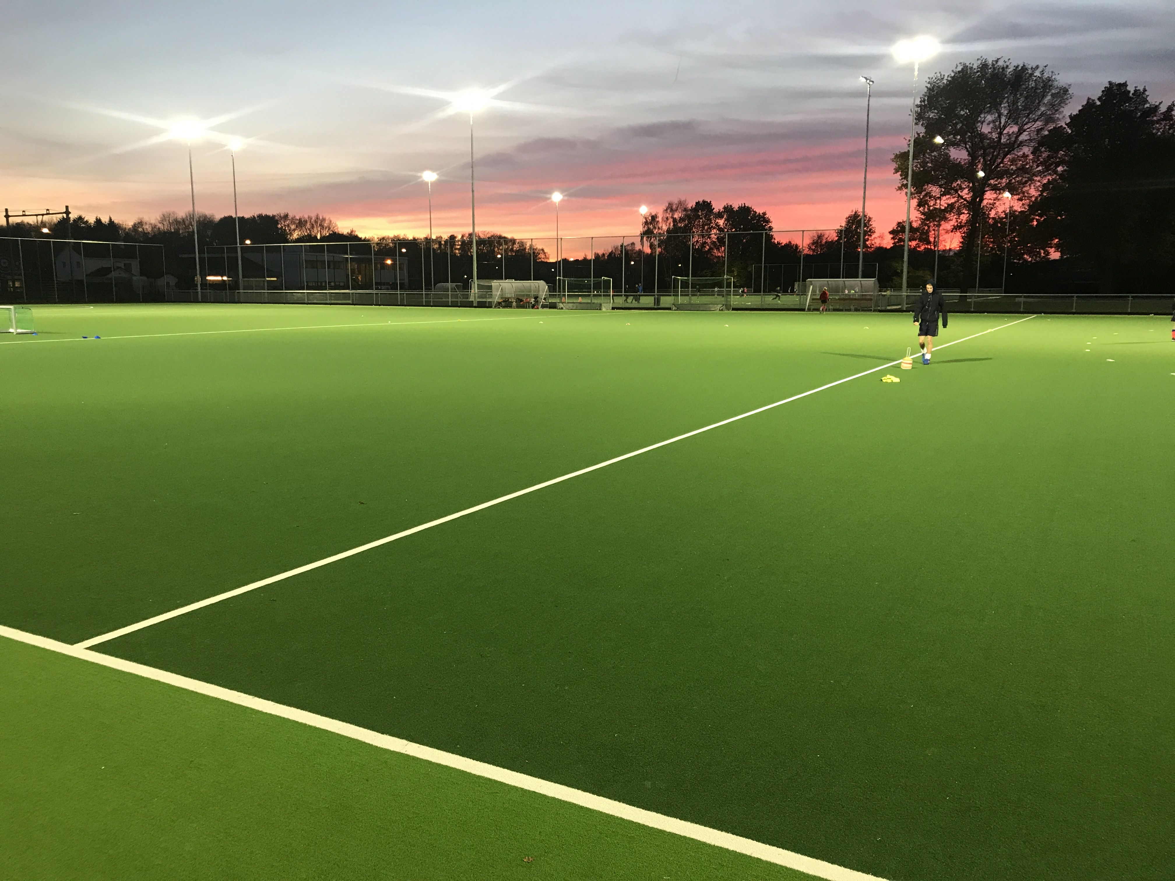 Artificial Grass For Hockey Pitch In Netherlands Hockey Sports Wall Art Field Hockey