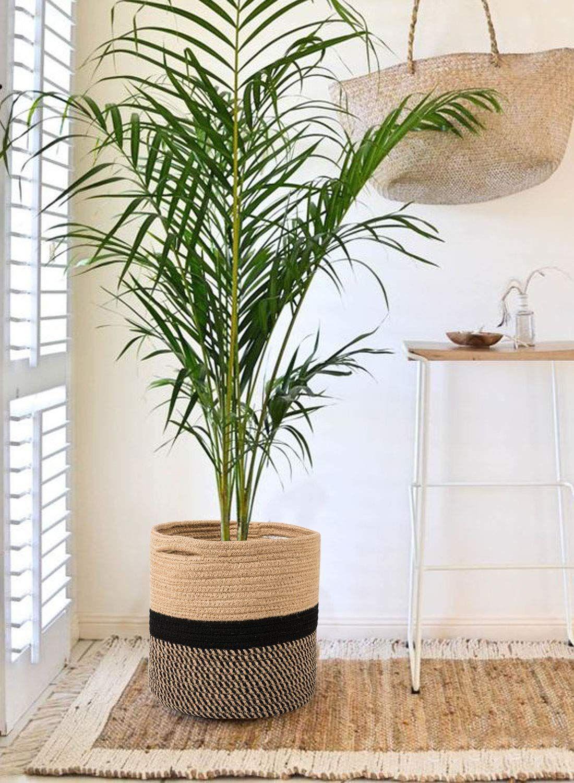 Jute Plant Basket Modern Woven Basket for 10