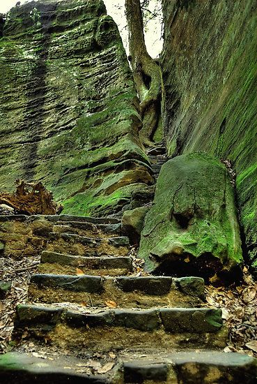 Old Mans Cave Hocking Hills OH  travel  Pinterest