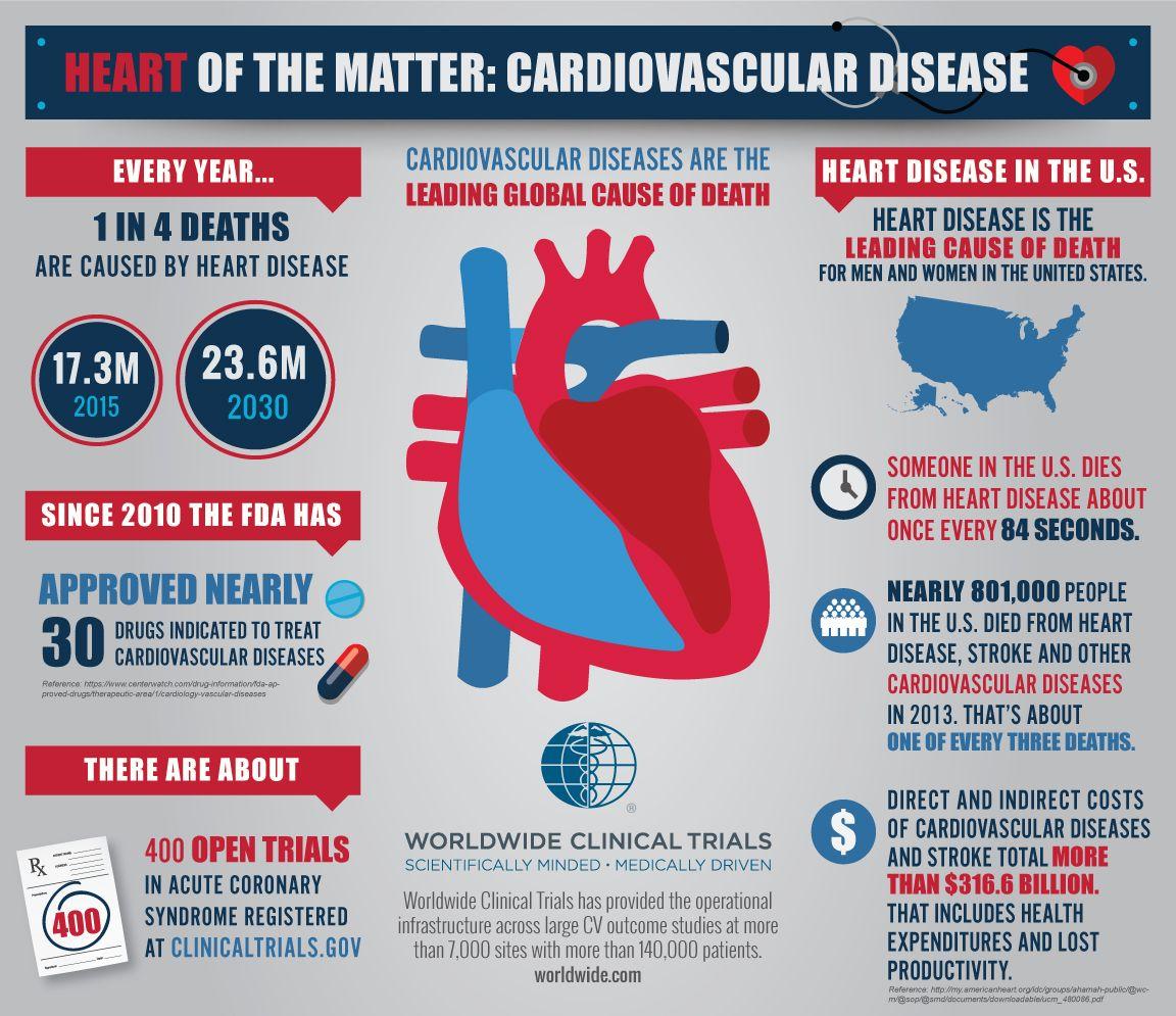 Cardiovascular Disease Infographic 995