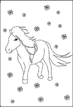 Pferde Malvorlagen Und Ausmalbilder Fur Kinder Kostenlose Malbilder Ausmalbilder Pony Ausmalen Ausmalbilder