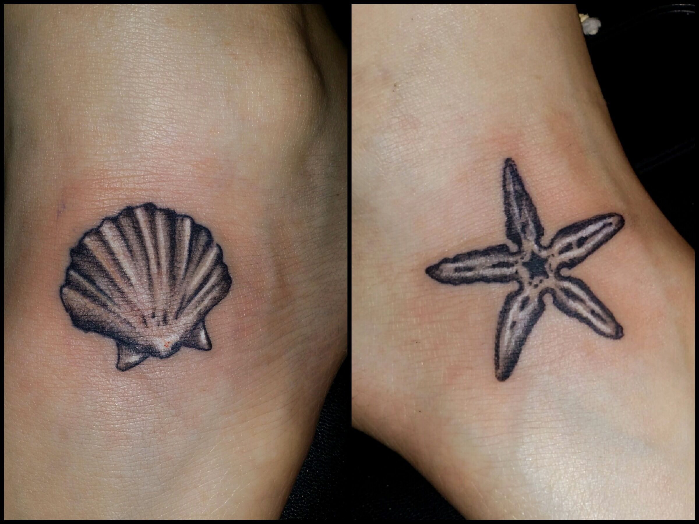 seashell and starfish tattoo by chris vangeli of amaryllis tattoo palmer tsp pa www. Black Bedroom Furniture Sets. Home Design Ideas