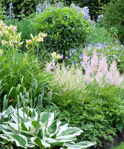 Garden Ideas, Perennial Planting, Perennial combination, Summer ...