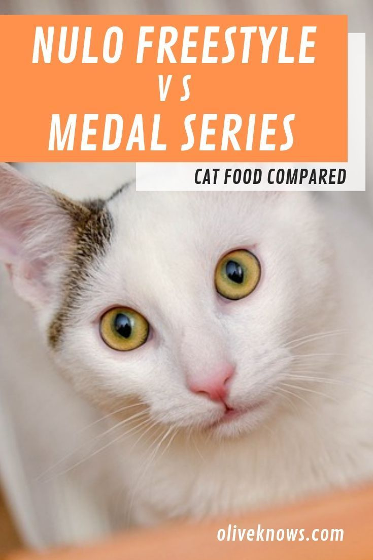Nulo freestyle vs medal series cat food 2021 which one