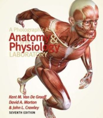 A Photographic Atlas For The Anatomy And Physiology Laboratory ...