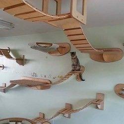 faites de votre maison un paradis pour chats g ant dans le monde et felin. Black Bedroom Furniture Sets. Home Design Ideas