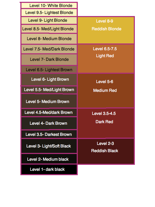 Level 8 Hair Color Chart Hair Color Formulas Hair Color