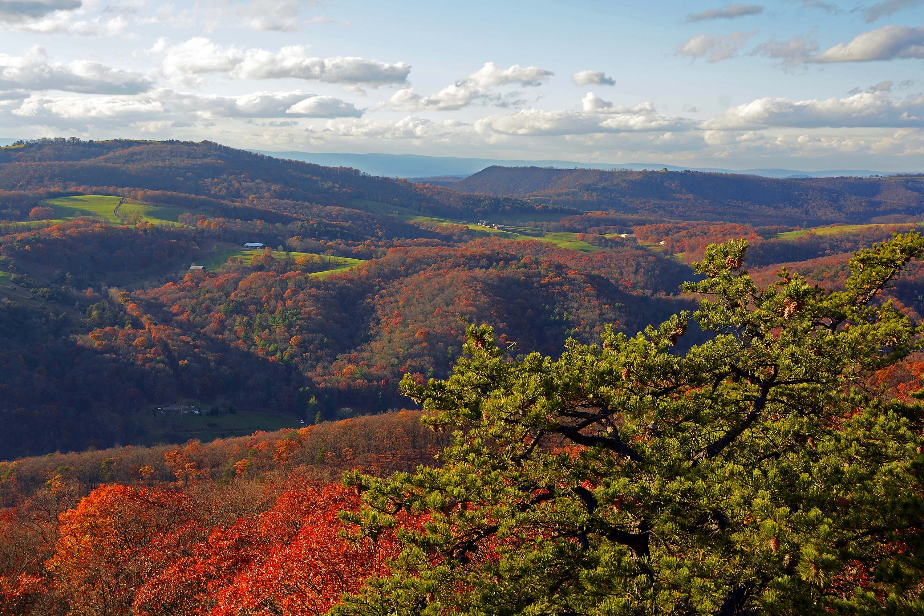 WV MetroNews – Fall foliage underway in state parks