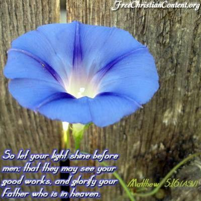 Matthew 5 16 Bible Scriptures How To Memorize Things Spiritual Encouragement