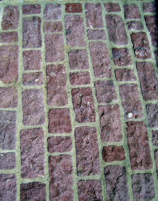 Paving Materials Photo Gallery: Rustic Brick in Mortar