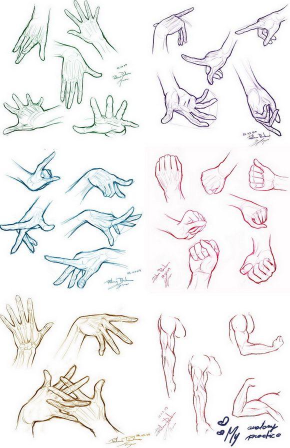 My Anatomy Practice by roxaralu on deviantART | Children\'s book ...