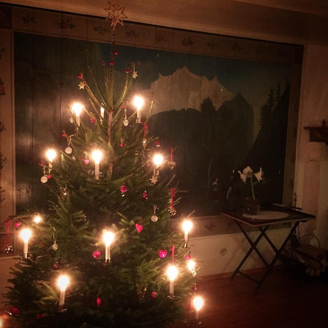 #tjerne #romjul #juletre #levendelys #desember #bondegårdsjul #juliringsaker