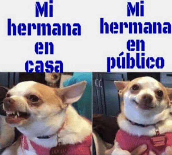 Galeria 17 Memes Que Reflejan La Vida Entre Hermanas Notinerd Class Memes New Memes Funny Spanish Memes