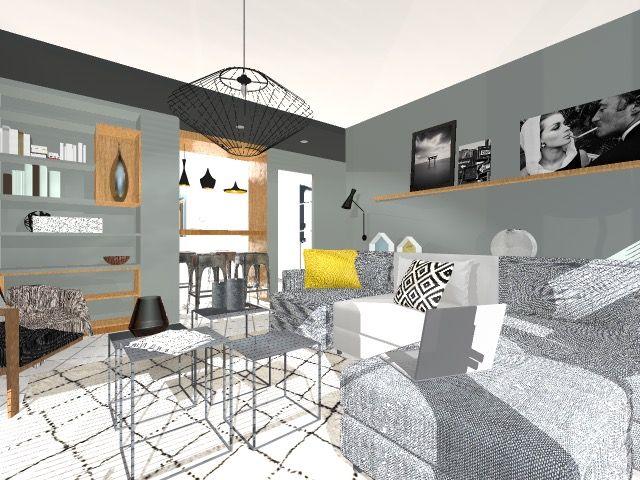 Aménagement, rénovation, séjour, lyon, cuisine sur séjour, espaces