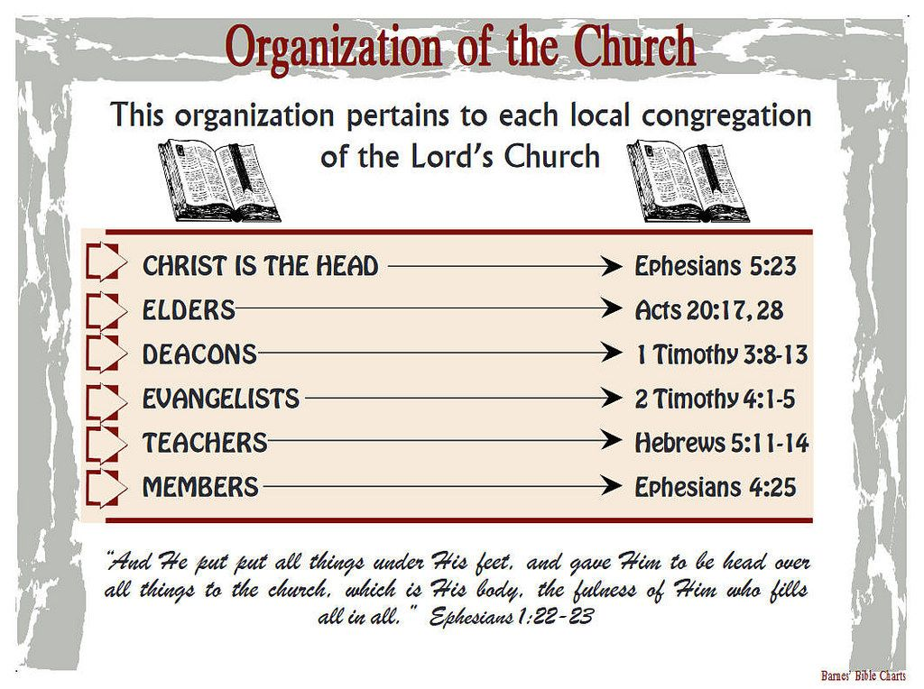 Organization of the Church | Barnes Bible Charts - A to Z