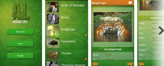 Animal Life, una enciclopedia de animales para Android.