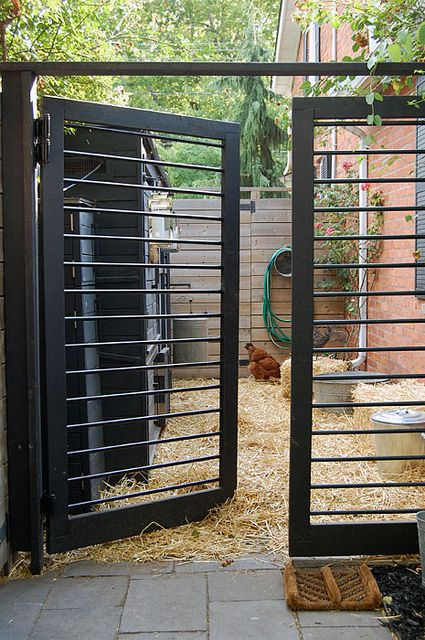 The Coop Gates Gate Building For Beginners Chicks Pinterest