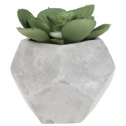 Vase Et Plante Artificielle Pas Cher Gifi Fleur De Cactus Plantes Artificielles Cactus