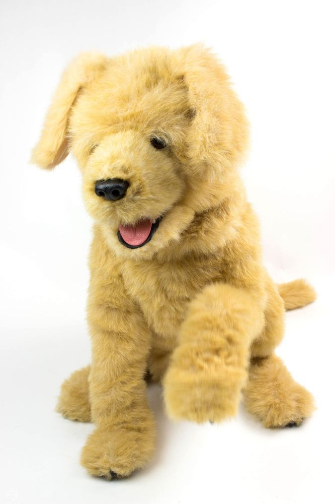 Dog Toys Top 10 Best Puzzle Toys On Amazon Dog Puzzles Toy