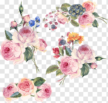 Flower Floral Design Hand Painted Flowers Pink Flowers Illustration Free Png Flower Illustration Pink Floral Painting Floral Illustration Free