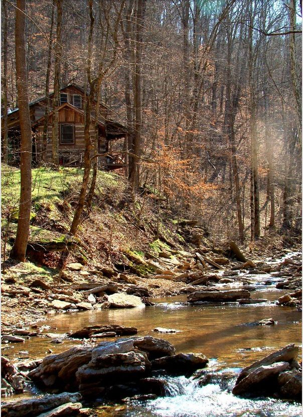 Love the secluded feel... I would totally love living there and becoming a hermit :)