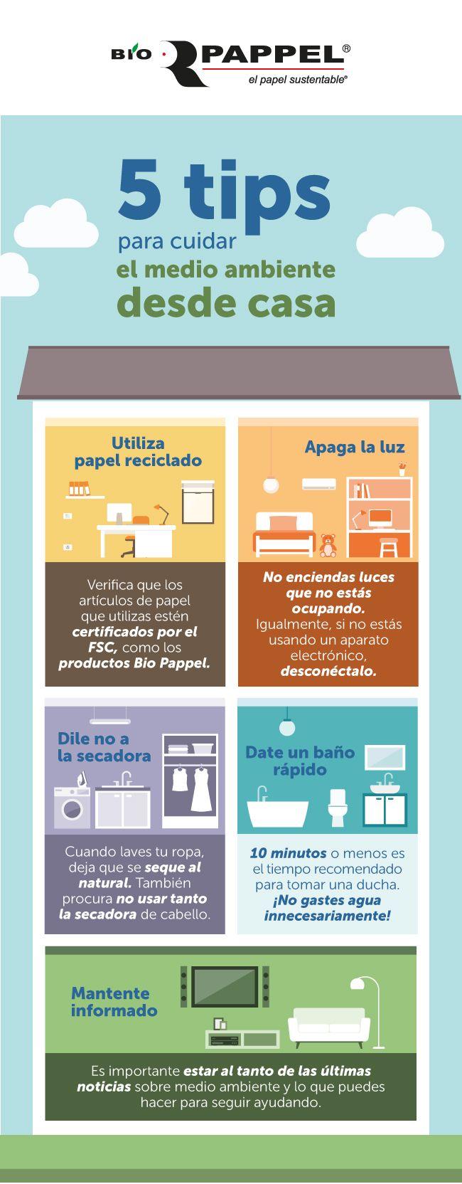 5 Tips Para Cuidar El Medio Ambiente Desde Tu Casa Medio