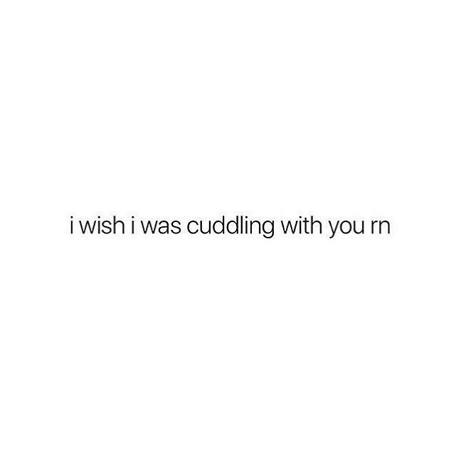 i wanna cuddle and cuddle and cuddle Words of wisdom | Me quotes | Wise words |Inspirational words | Love quotes | Favorite quotes #Quotes #words #text #inspiration