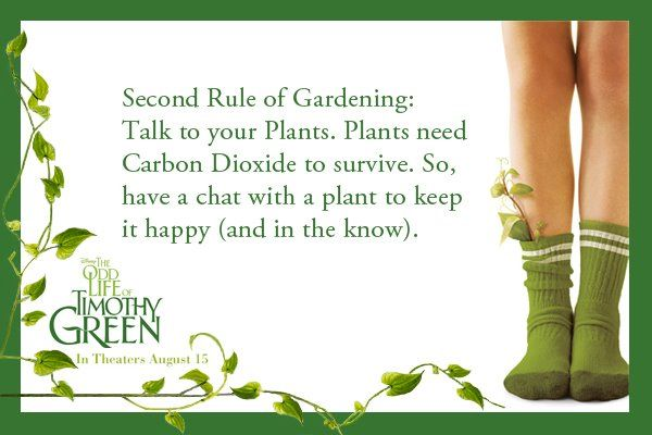 Second Rule of Gardening: Talk to your plants!