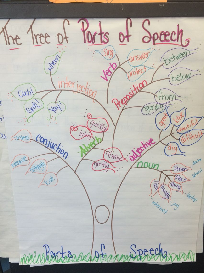 Examples Of Parts Of Speech Through A Tree  Anchor Chart