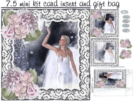 night fairy mini kit on Craftsuprint designed by Cynthia Berridge - night fairy mini kit card insert and gift bag - Now available for download!