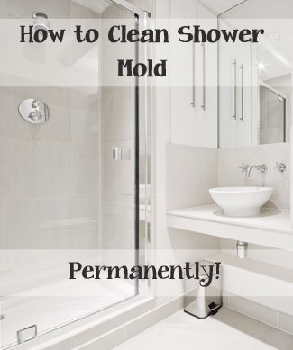 Top Ways To Clean Your Shower Mold Shower Mold Household And Extraordinary Best Way To Clean Bathroom
