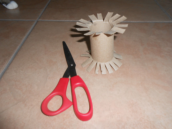 5 Homemade Cat Toys I Made From Empty Toilet Paper Rolls In 2020
