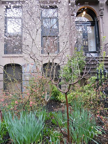 C A S A C A R A Old Houses For Fun Profit Old Houses House Front Nyc Brownstone