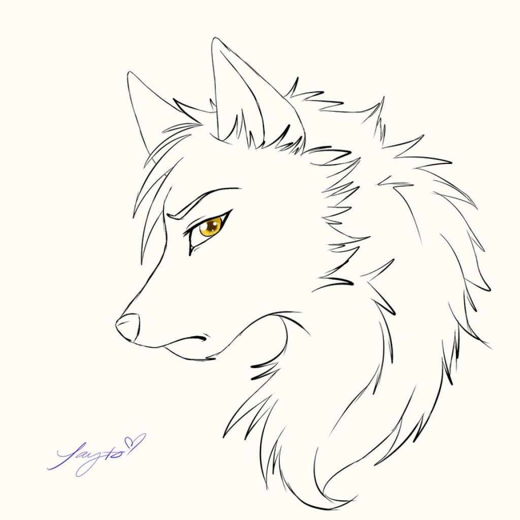 Cartoon Wolf Drawing Anime Wolf Drawing Wolf Sketch Cartoon Wolf Drawing