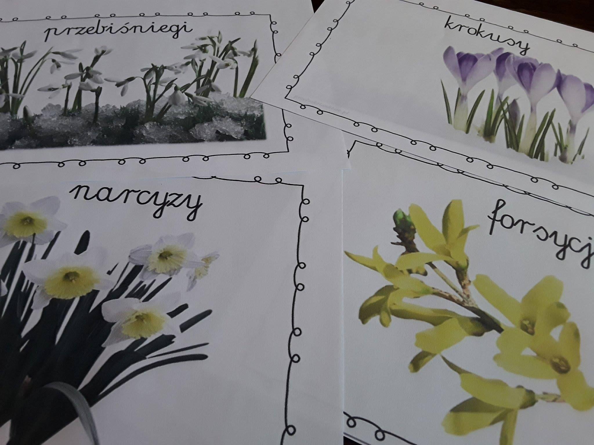 Wiosenne Kwiaty Plansze Zestaw 1 Diy And Crafts Crafts Printables