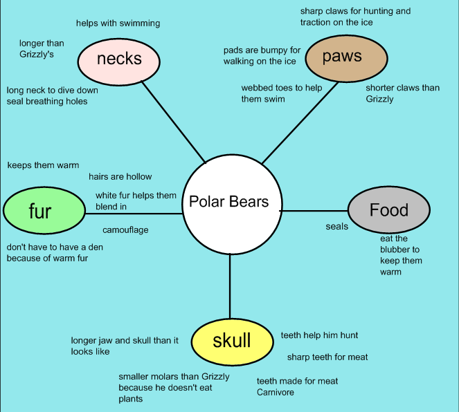 Science Habitats: Adaptations -- Polar_Bears_Adaptations_Web to go ...