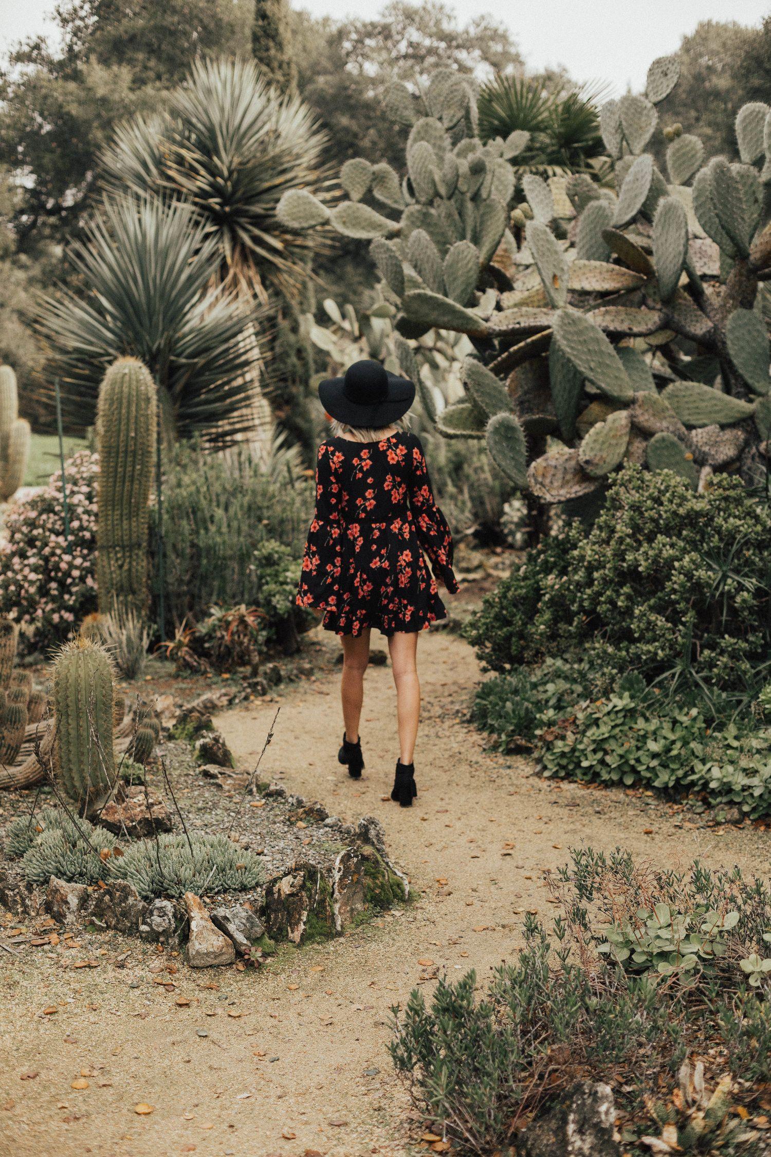 Arizona Cactus Garden @ Stanford University   Www.shandru.com