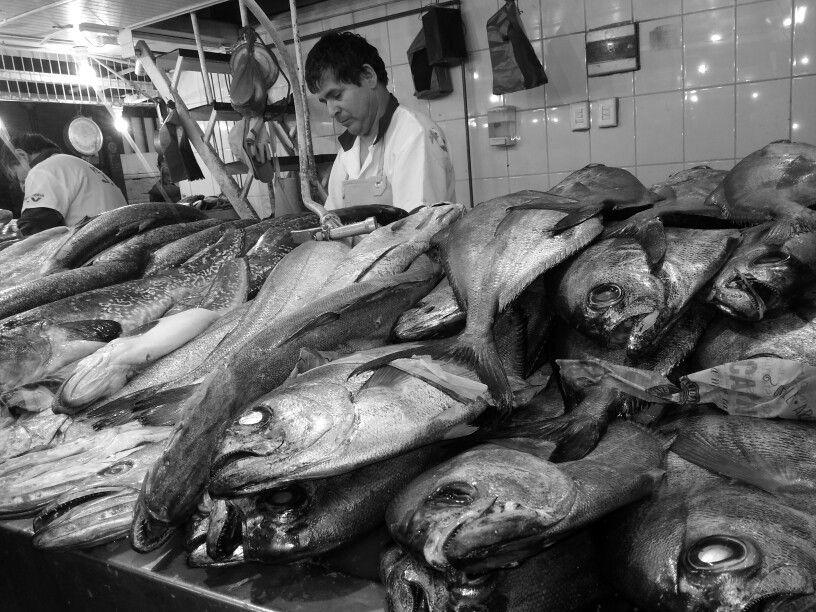 mercado #scllinda