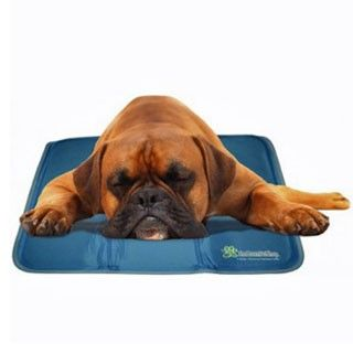 Cool Pet Pad I D Like To Try This Item To See How It Works For Tipper It S A Good Item To Carry In The Car While Traveling Dog Cooling Mat Pet