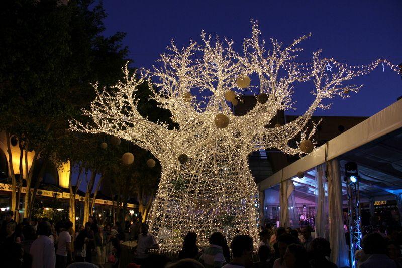 Johannesburg Tree On Christmas Kerstmis Feestdagen