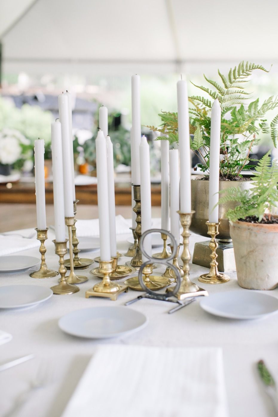 Say Aloe to this Plant Filled Backyard Wedding Fit for a Boho Queen ...